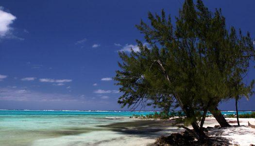 Islas Caimán, un paraíso en el Caribe
