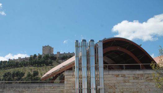 Tiempo de vinos en Bodegas Protos