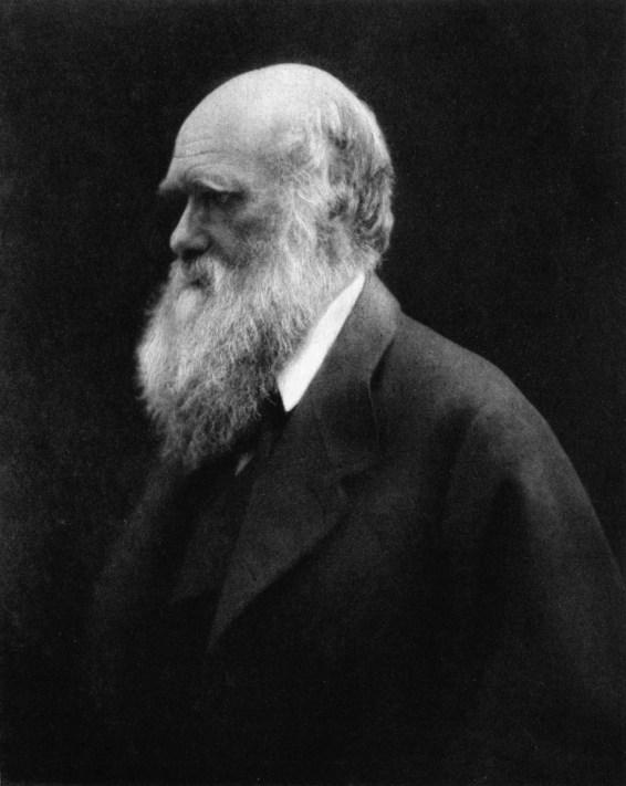 Charles Darwin Margaret Cameron