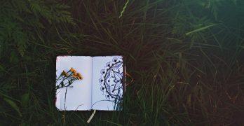 potenciar tu creatividad